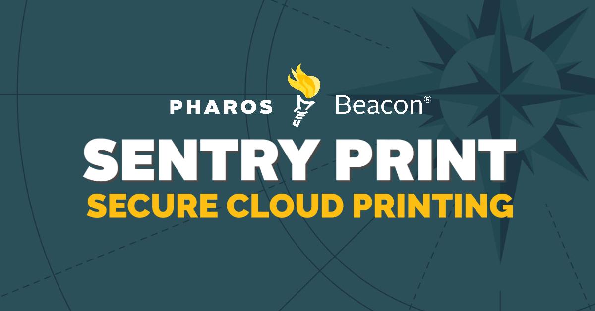 Sentry Print